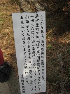 yugawara140309-231.jpg