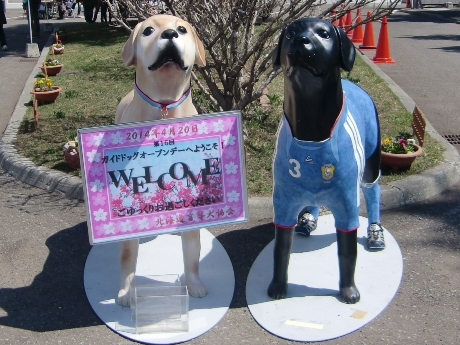 4月の第4水曜日は、国際盲導犬デー
