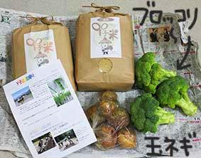 Y子農園オマケ6