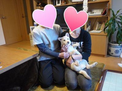 IMG_3355koyuki13.jpg