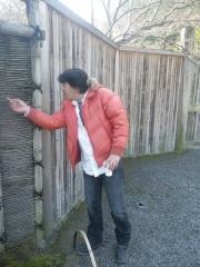 そうだ!!京都へ行こう1