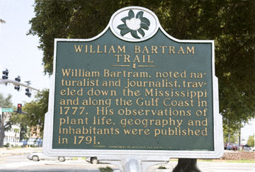 blog 90E Biloxi, William Bartram Trail, near Mississippi Border, AL_DSC0111-8.29.09.(1).jpg