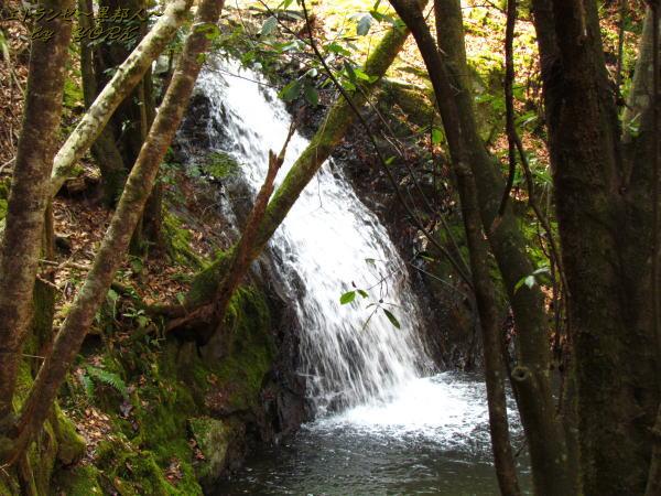 0510白水の滝 女滝140309