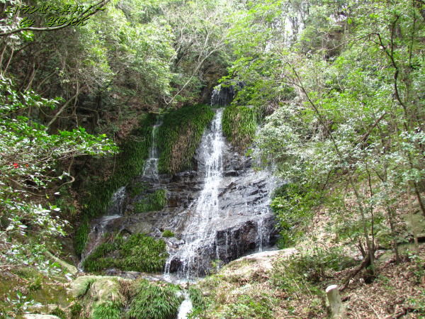 0664太戸の滝上段140329