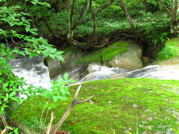1814二軒屋の大滝落ち口から140622