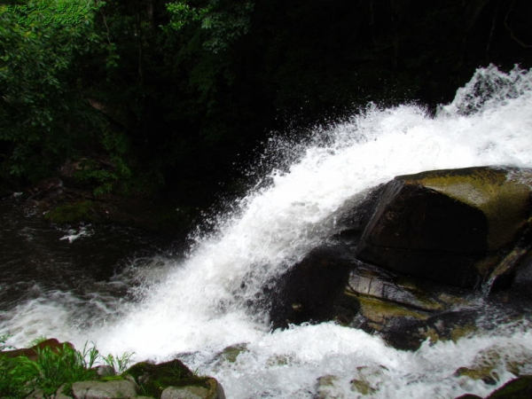1834迫力ある唐音の滝140622