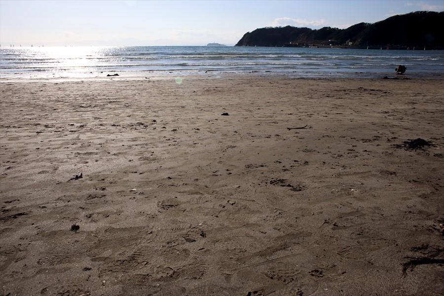 逗子海岸0301