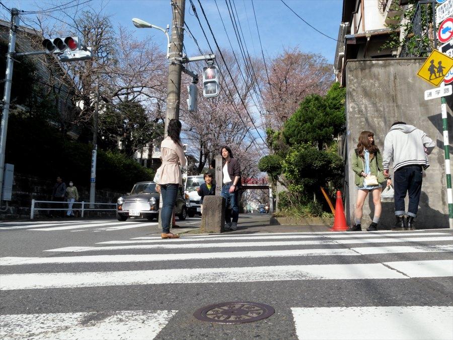 桜坂桜0102