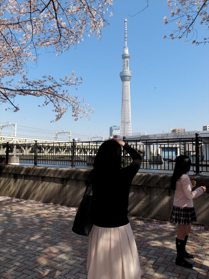 浅草桜0103