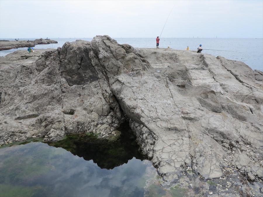 江ノ島岩棚0601