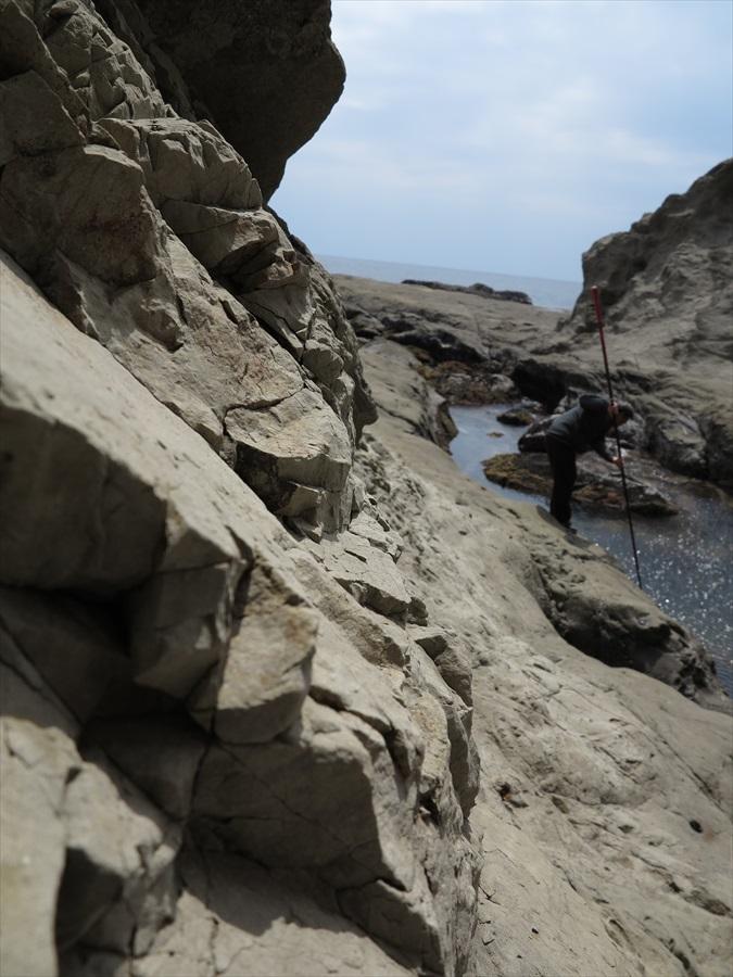 江ノ島岩棚0607