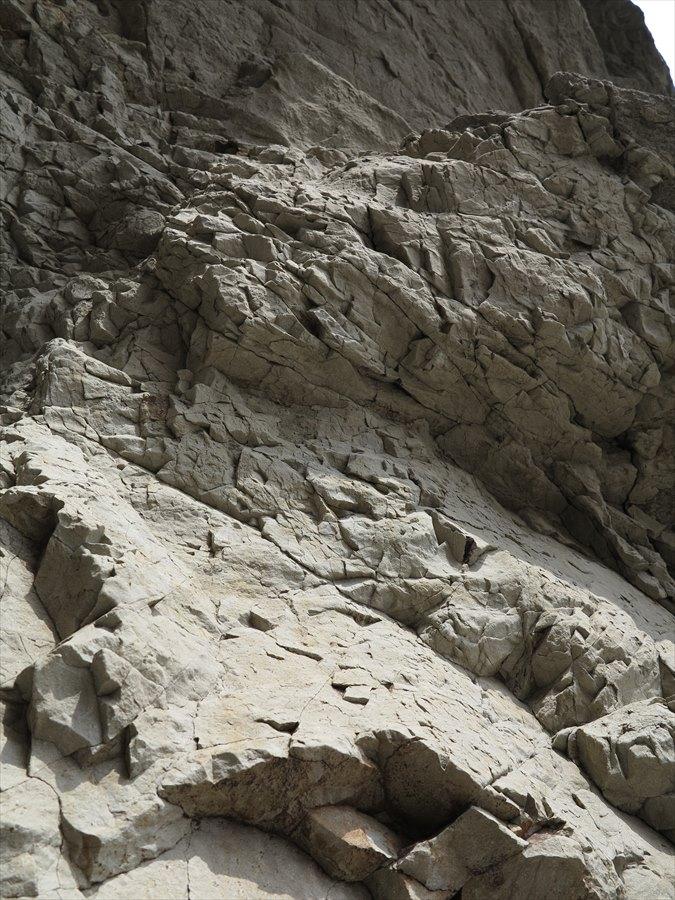 江ノ島岩棚0608