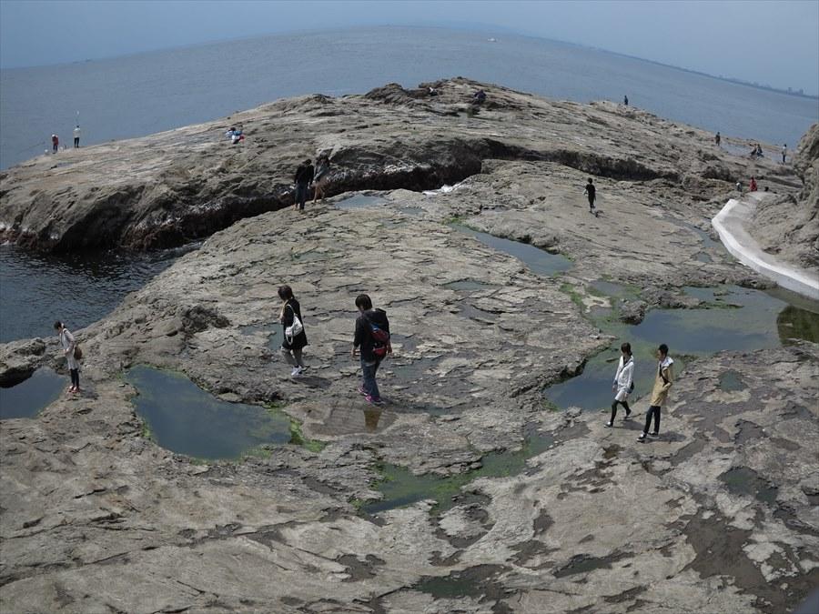 江ノ島岩棚0702