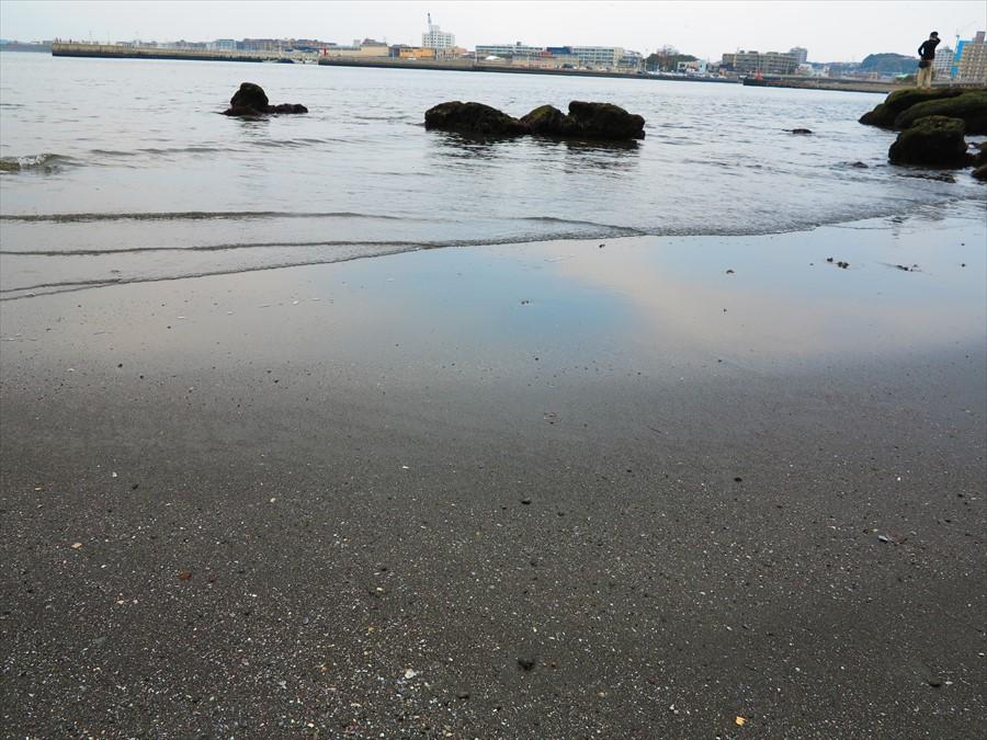 江ノ島岩棚0706