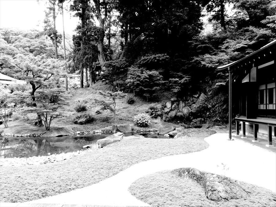 鎌倉紫陽花0503