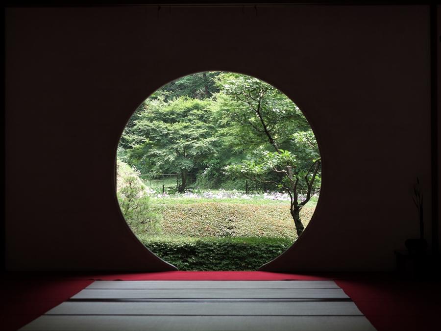 北鎌倉紫陽花0902
