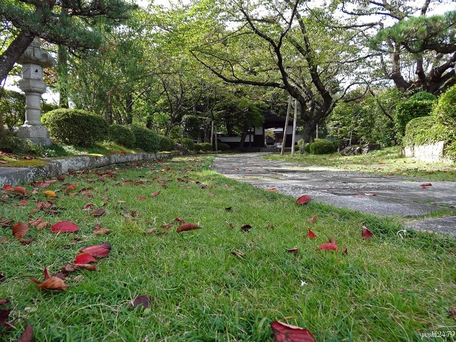 仙台お寺0101