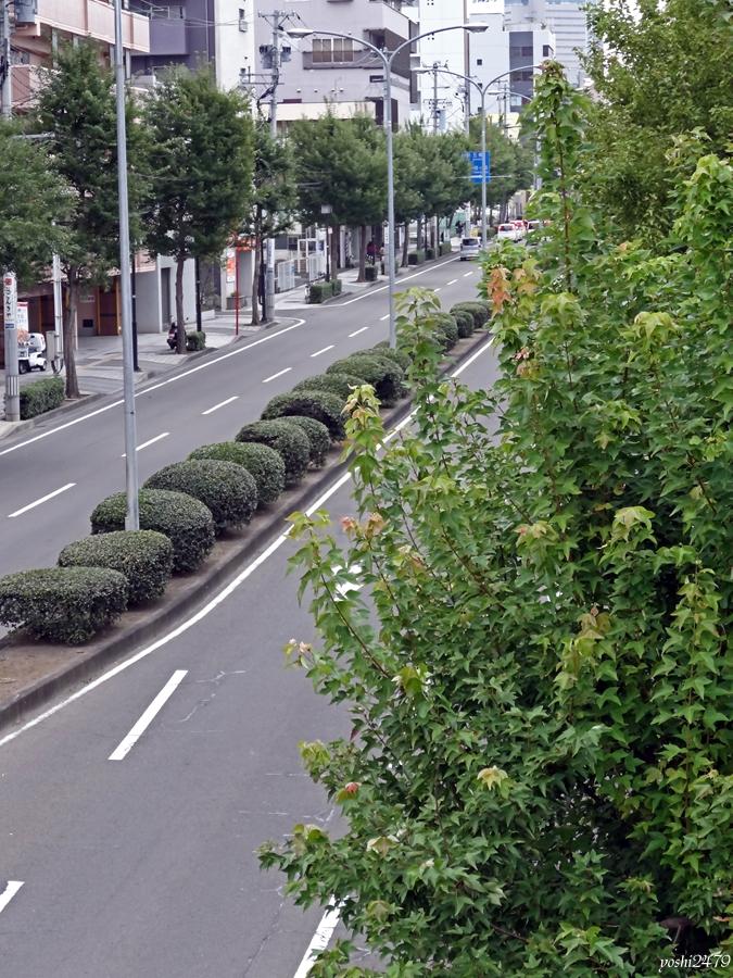 仙台お寺0206