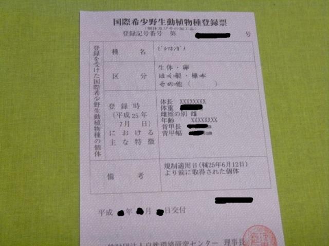s-s-P1060763.jpg