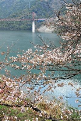 3大渡ダム20140325