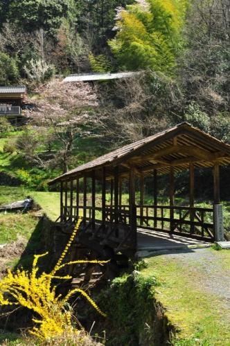 3田丸橋14.03.28
