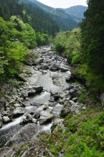 3瀬戸川05.03
