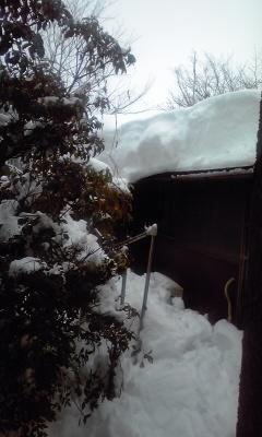 すごい雪だったね