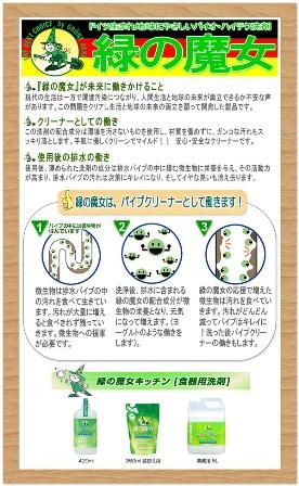 緑の魔女 (7)
