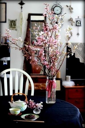 お星様ランプと桜 (3)