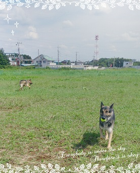 2014-09-12_144811.jpg