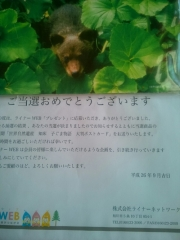 KIMG0316.jpg