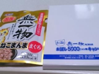 KIMG0353.jpg