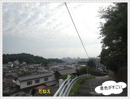 DSC01852_201409172354134f7.jpg