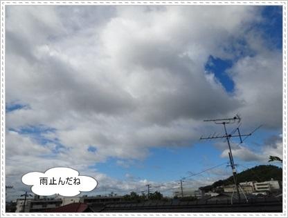 DSC02080_20140925224632bb9.jpg