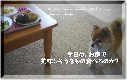 01-ゆめとパン140829