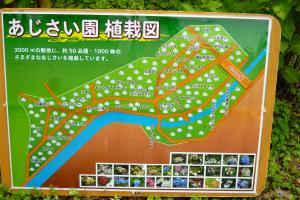 緑花センター(あじさい園植栽図)