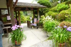 花しょうぶ園入口