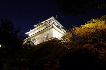 竹燈夜 天守閣前広場近くで