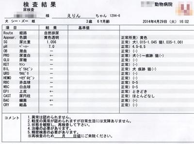 2014-4-29sえりん