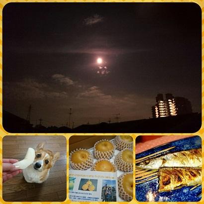 PicsArt_1410273618621.jpg