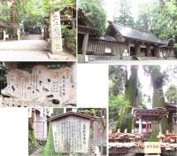 高千穂神社 1