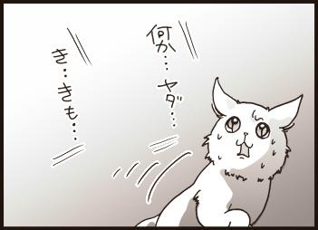 108-19.jpg