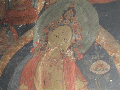 Tsomoriri Tsokar Tour (159)_R