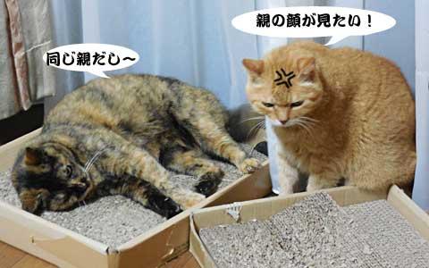 14_08_29_5.jpg