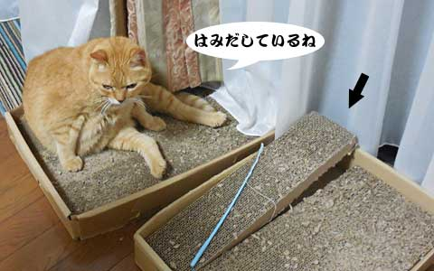 14_09_04_1.jpg
