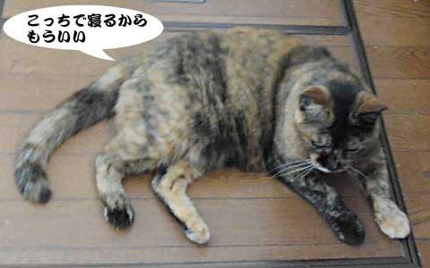 14_09_04_3.jpg