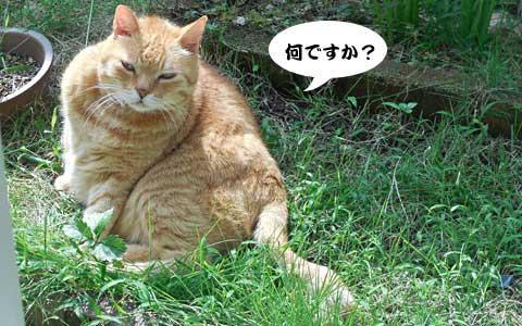 14_09_06_1.jpg