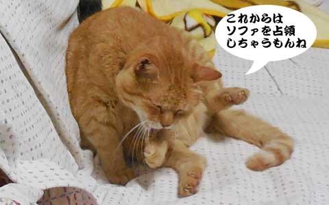 14_09_08_3.jpg