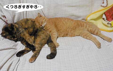 14_09_08_4.jpg