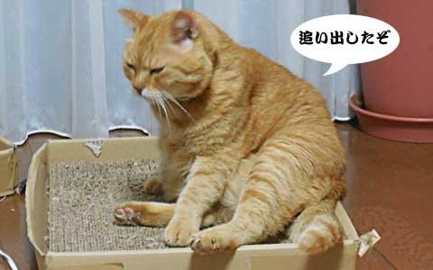 14_09_17_3.jpg